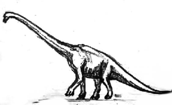 Рисунок брахиозавр