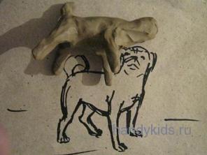 Слепим собаку