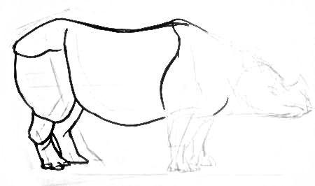 Урок рисования индийского носорога