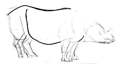 Урок рисования носорога
