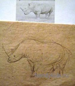 Нарисуем Носорога
