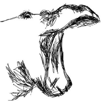 Рисунок -Голова гиппопотама