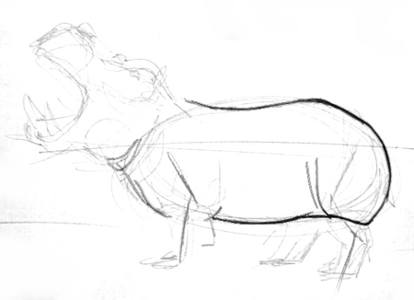 Рисунок -туловище бегемота