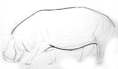 Рисуем бегемота -туловище