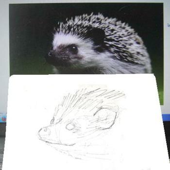 Как нарисовать голову ежа