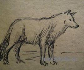 Рисунок -волк