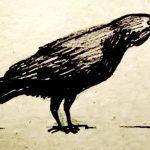 Как нарисовать ворона (а не ворону)