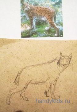 Как рисовать рысь