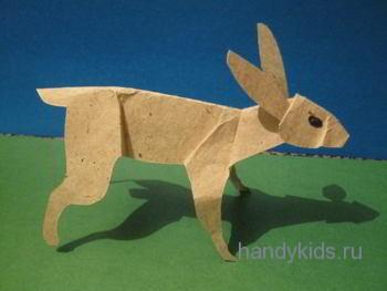 model-zajca-11-21-11-10