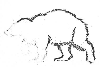 Рисуем росомаху