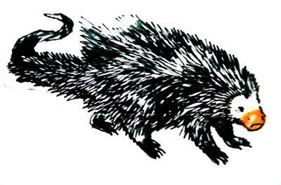 Рисунок американский дикобраз