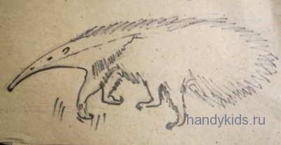 Рисуем муравьеда
