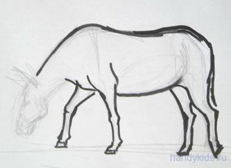 Урок рисования осла.