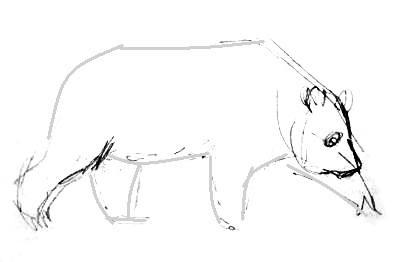 урок поэтапного рисования панды
