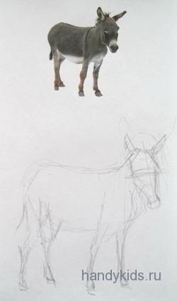 Рисуем осла