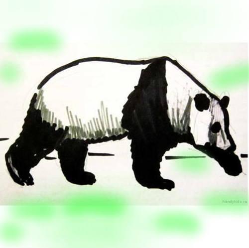 Панда рисунок в цвете