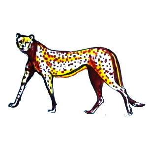 Рисунок гепард
