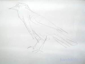 Набросок фигуры птицы