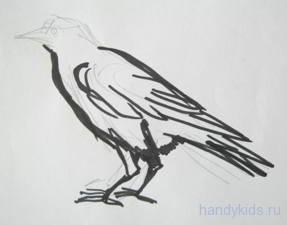 Рисуем грача