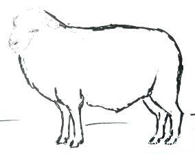 Урок рисования барашка