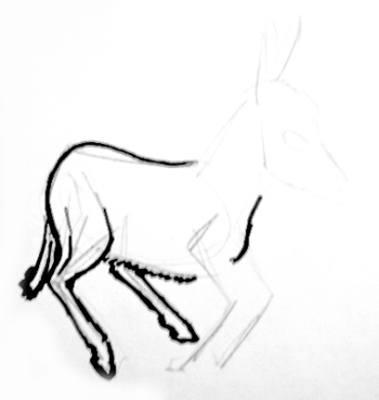 Рисуем задние ноги ослика