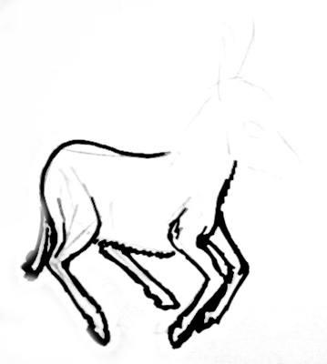 Рисуем ноги ослика