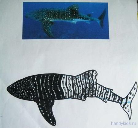 Раскраска Акула для детей