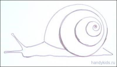 Раскраска сухопутная улитка