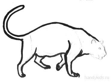 Поэтапный рисунок пантеры