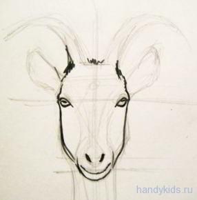 как нарисовать голову козы