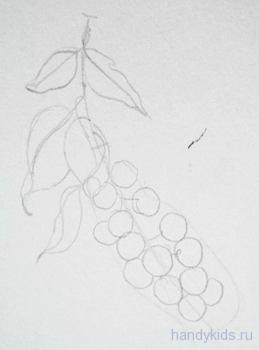 Рисуем ягоды поэтапно