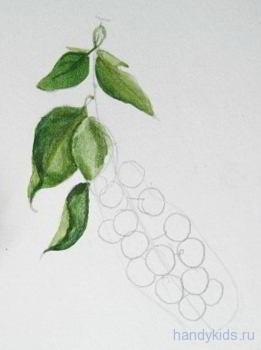 Рисование ягод