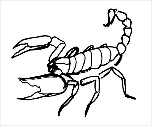Раскраска Скорпион