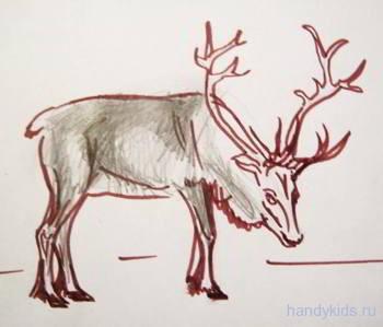 Рисунок олень