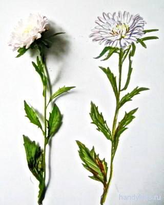 Рисунок Астра