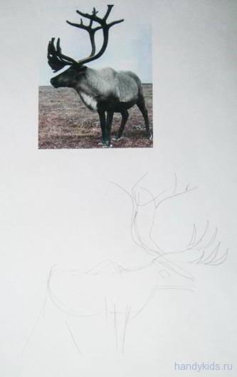 Рисуем оленя поэтапно