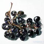 Рисунок -гроздь винограда