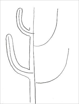 Раскраска кактус -2