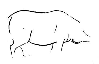 Поэтапный рисунок свиньи