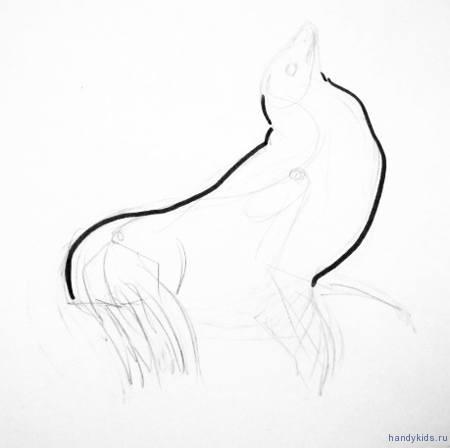 Поэтапный рисунок морского котика