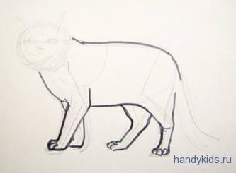 Как нарисовать кошку британской породы