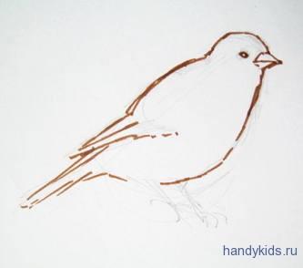 Как нарисовать канарейку