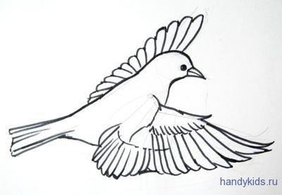 Нарисуем крылья летящей птицы