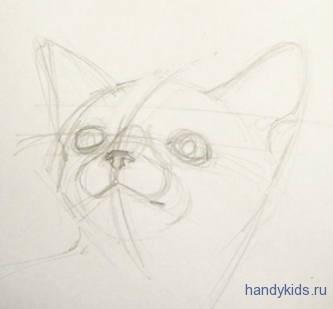 Рисуем голову котёнка.