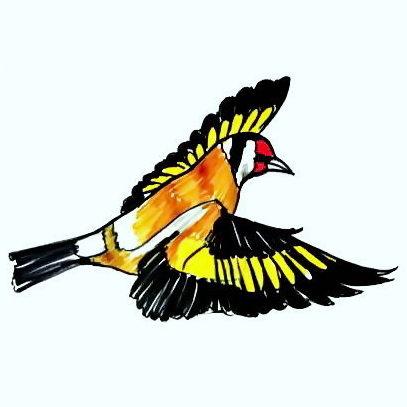 Рисунок Летящий Щегол
