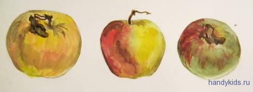 Яблоки различной окраски