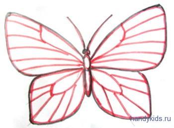 Бабочка -рисунок