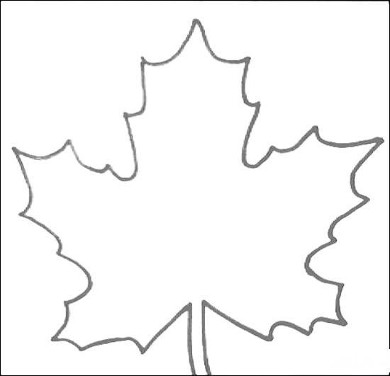 Раскраска лист клёна