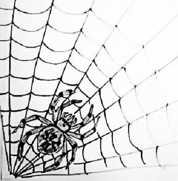 Аппликация Паук на паутине
