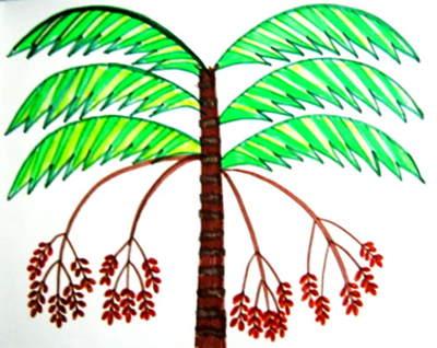 Раскраска Пальма с финиками.